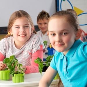 Educación Ecológica y Sustentable